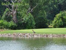 Golfclub Borghees e.V.